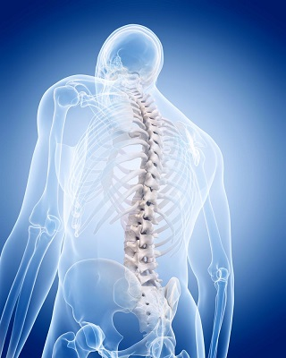 Daily Osteoporosis Prevention Methods